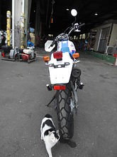 YAMAHA SEROW 225 описание NMB8869  (art-00122527) 4